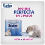 La higiene perfecta, un tema tabú para adultos desvelado por niños