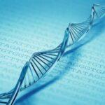 El ADN como medio de almacenamiento de la Información Digital